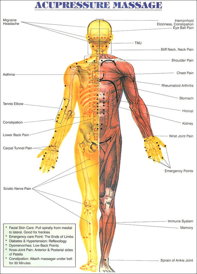 The healers point a complete haelth care acupressure ccuart Images
